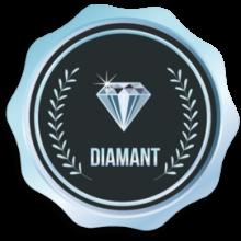 Niveau Diamant
